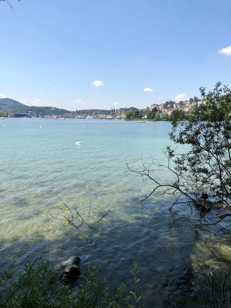 Praxis 3 Coaches Luzern Seeansicht - IBMS Coaching Besuch in der Schweiz