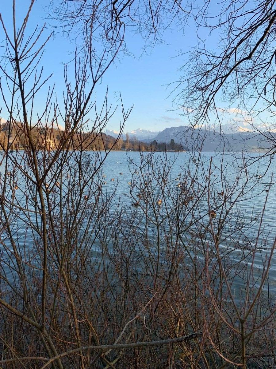 Bilder & Impressionen aus Luzern am Vierwaldstättersee